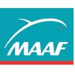Assurance dépendance de la  MAAF